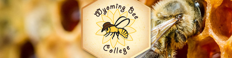 Wyoming Bee College